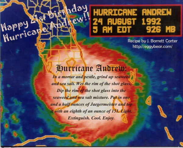 Hurricane Andrew.  By J. Barrett Carter.